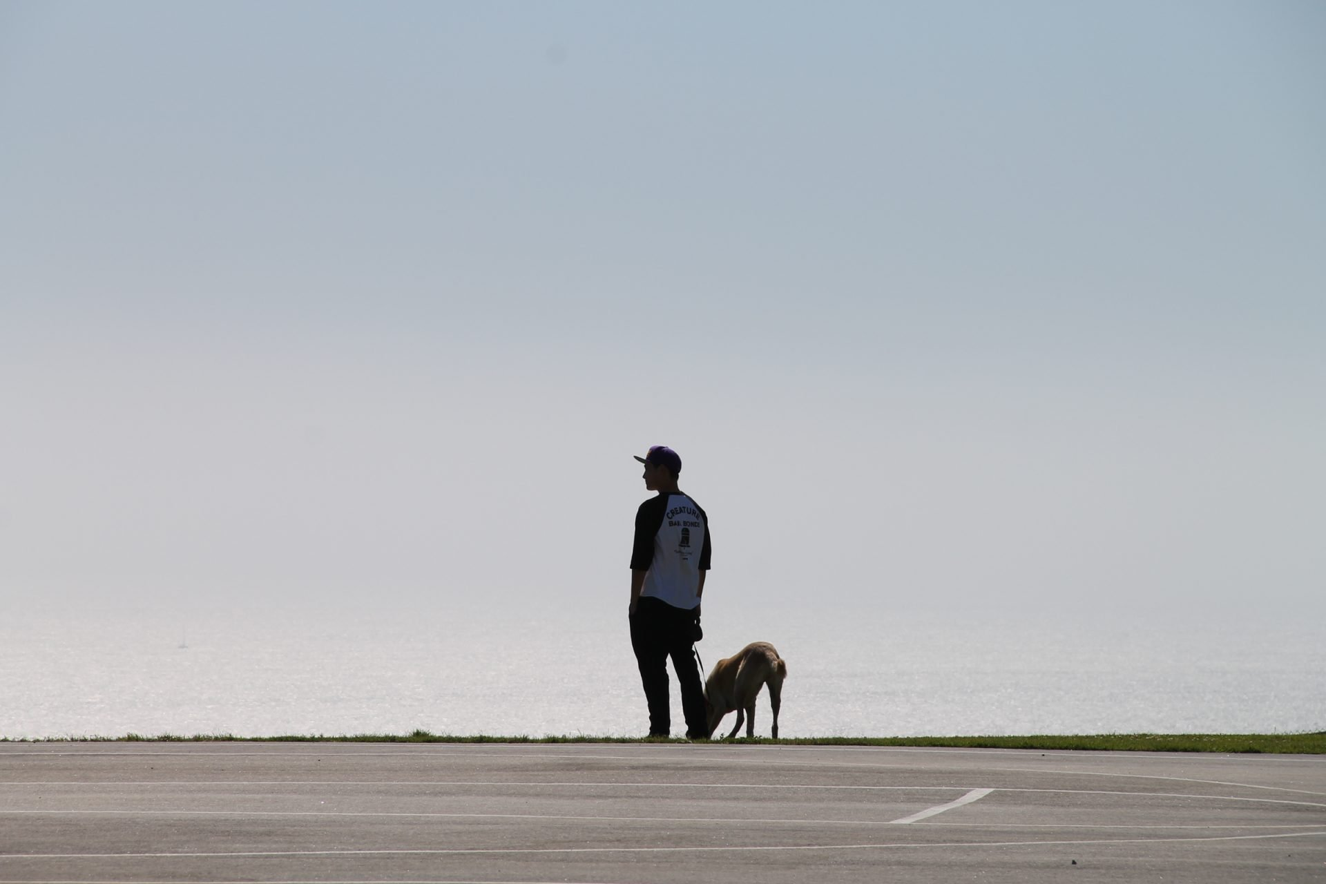 Silhouette of Man with Dog
