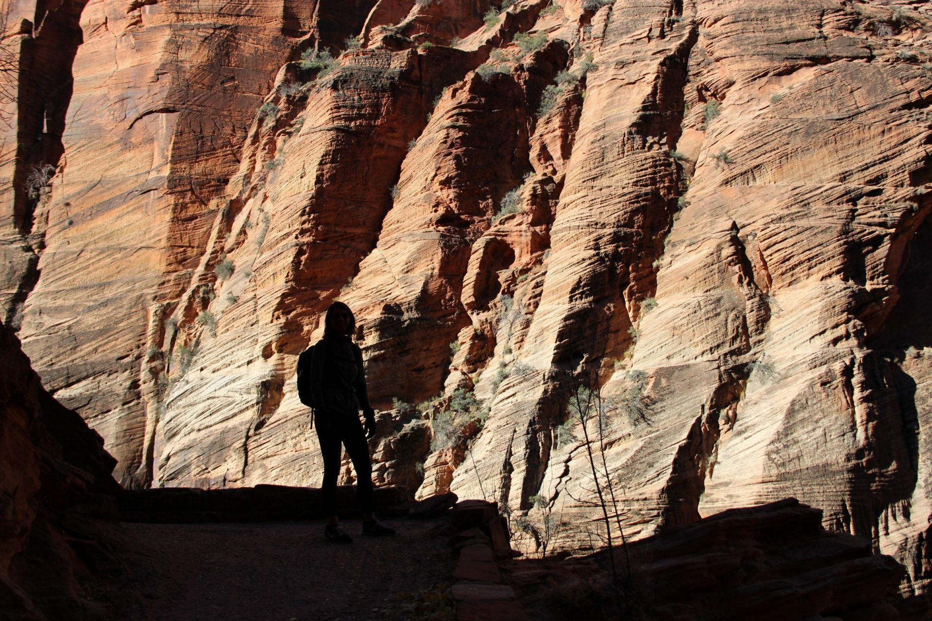Silhouette of Woman in Front of Cliffs