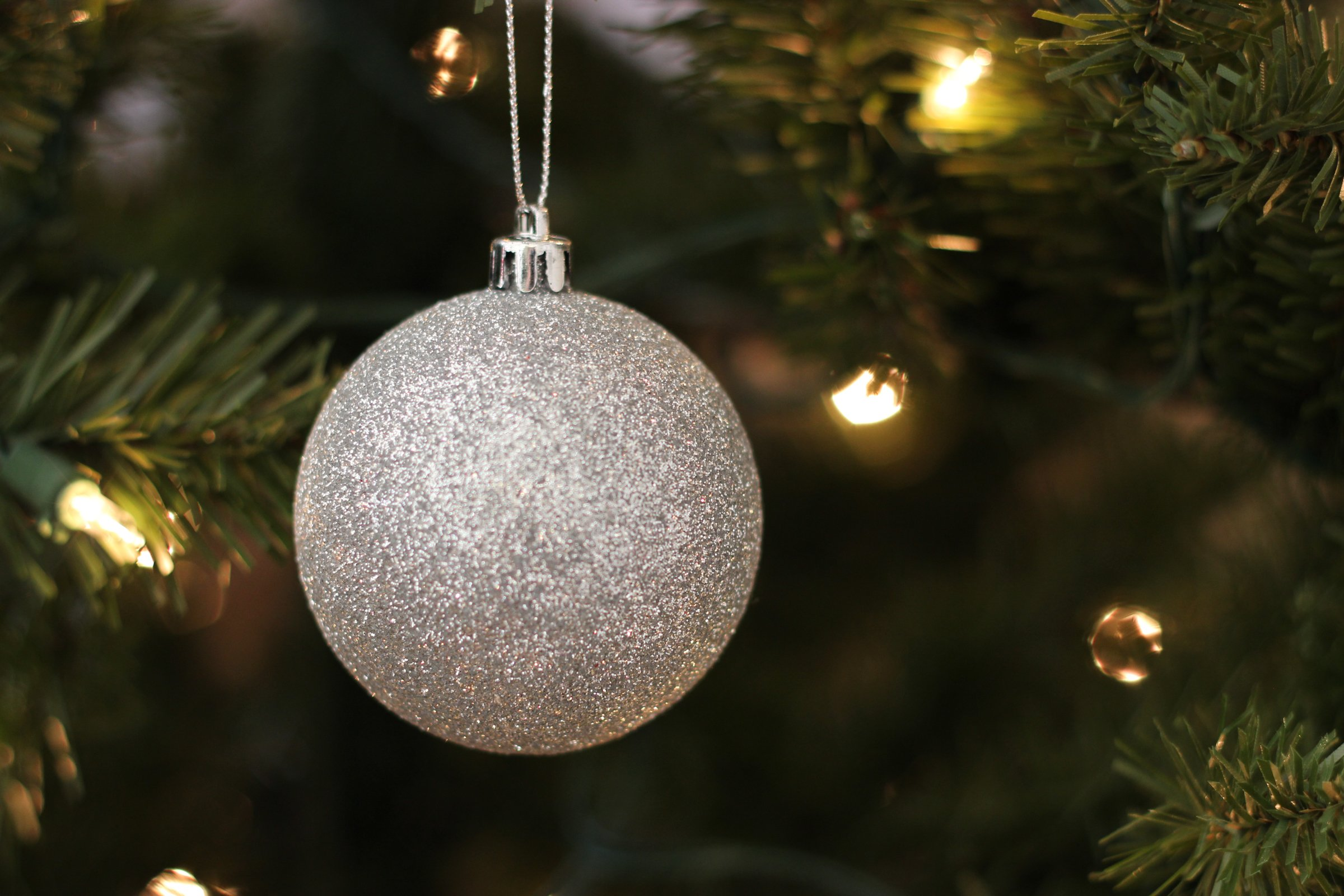 Free stock photo of silver ball ornament on christmas tree