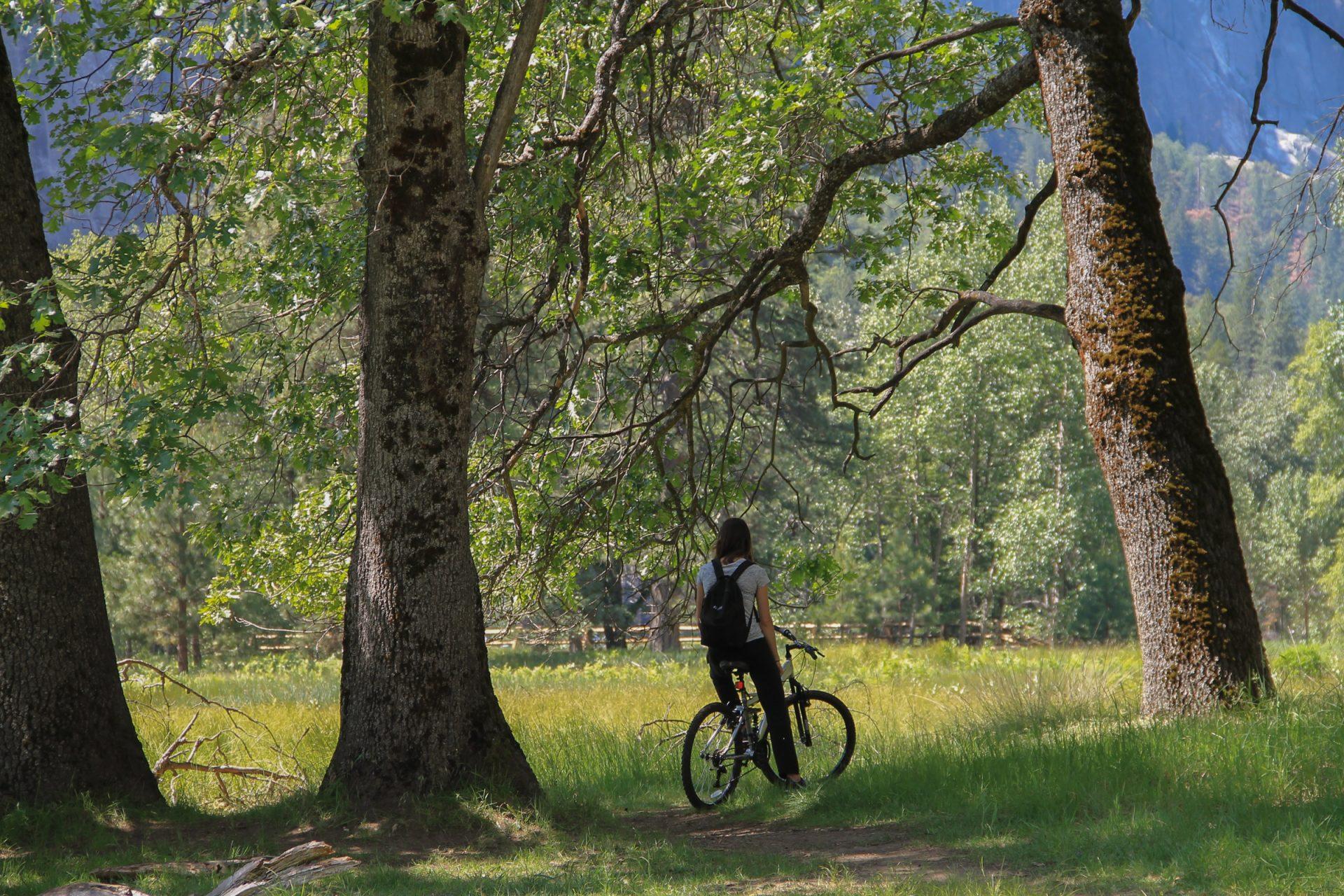 Woman on Bike in Field by Trees